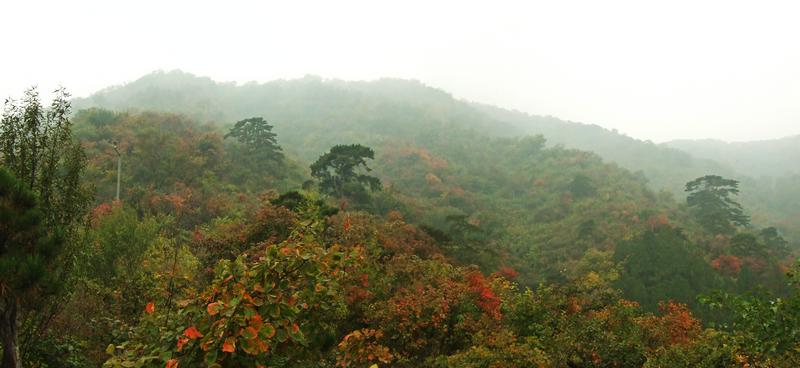 塞下秋来风景异中的异字 突出了塞下秋景的哪些特点