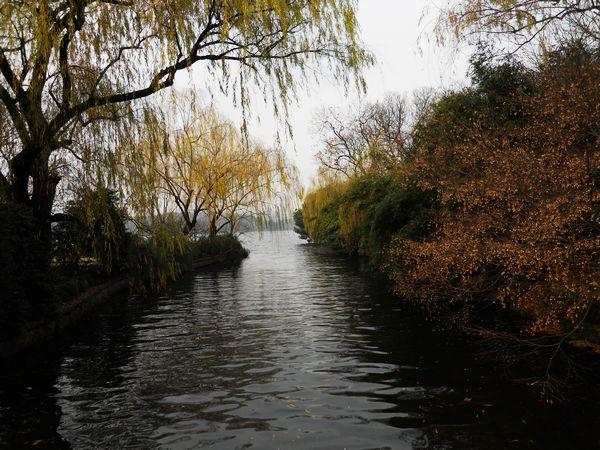 简单笔画画秋天的风景