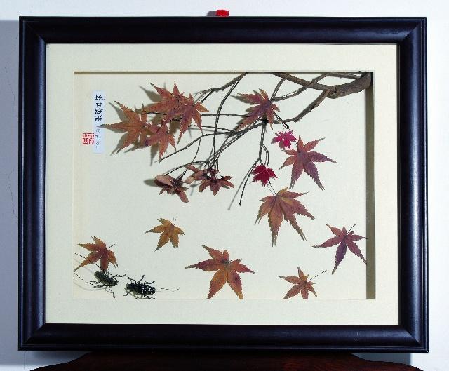 蜻蜓树叶手工制作图片