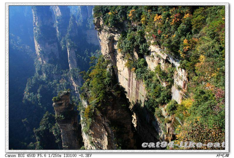 《世界自然遗产名录》),桑植县九天洞,八大公山,永定区茅岩河漂流