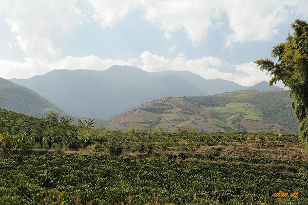 福贡到贡山这段路风景还是很美的,怒江在高黎贡山和碧螺雪山的夹缝中