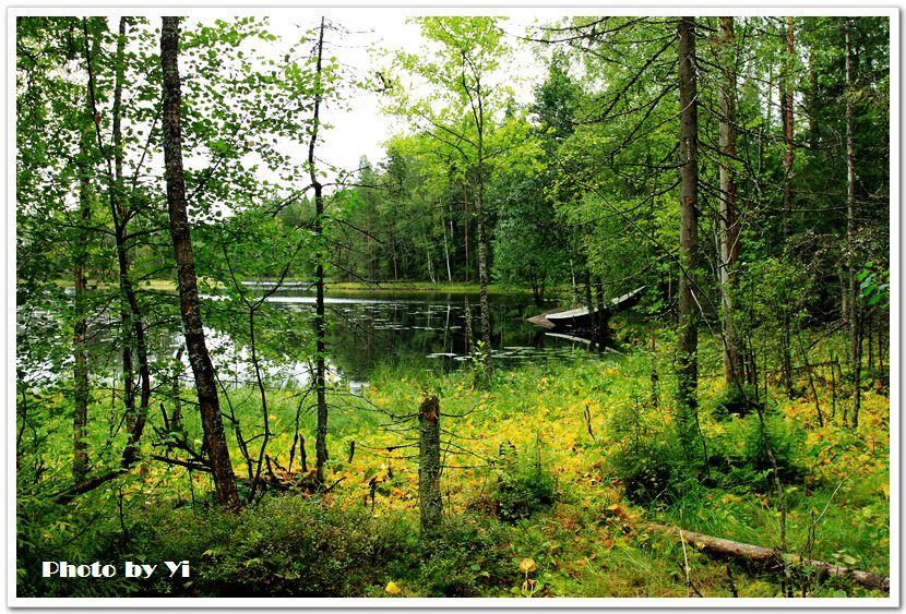 北欧风情6——芬兰国家森林公园图片