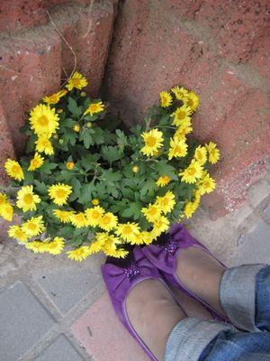钩针花骨朵花边