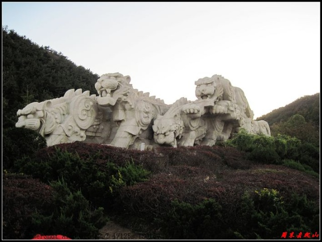 老虎滩群虎雕塑