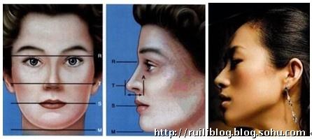鼻部结构图并带名称图