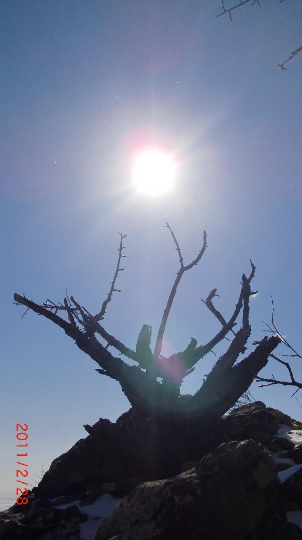 科尔沁吉利阁冬天风景