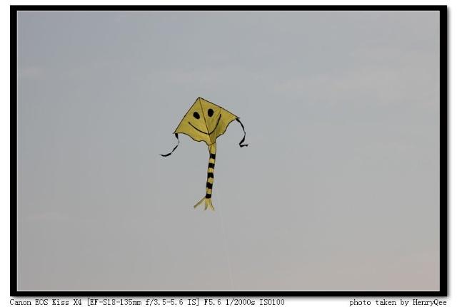 动物放风筝简笔画图片大全