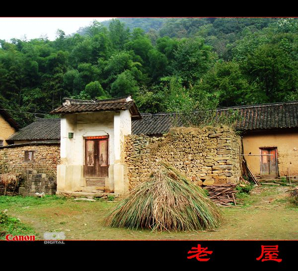 新农村自建小瓦房设计图